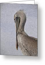 Brown Pelican In Paint Greeting Card