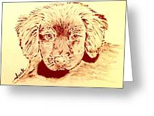 Brown Puppy Greeting Card