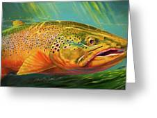 Brown Trout Portrait  Greeting Card