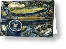 Brown Trout Rush Creek Greeting Card by Mark Jennings