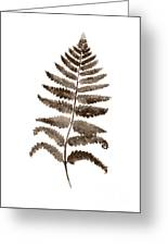 Fern Leaf Botanical Poster, Brown Wall Decor Modern Home Art Print, Abstract Watercolor Painting Greeting Card