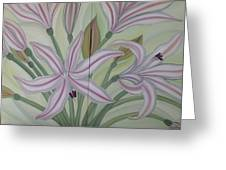 Brunsvigia Grandiflora Greeting Card