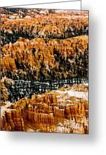 Bryce Canyon Series #3 Greeting Card