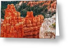 Bryce Canyon - Lone Tree Greeting Card