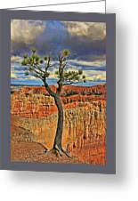 Bryce Canyon 46 - Sunrise Point Greeting Card