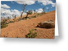 Bryce Canyon National Park Greeting Card
