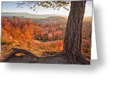 Bryce Canyon National Park Sunrise 2 - Utah Greeting Card