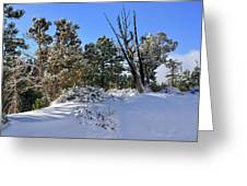 Bryce Canyon Snowfall Greeting Card