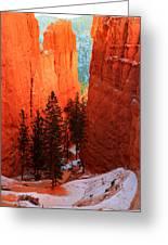 Bryce Canyon Sunrise Glow Greeting Card