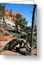 Spires On Navajo Trail Greeting Card
