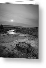 Bubbling Hot Spring In Yellowstone National Park Bw Greeting Card