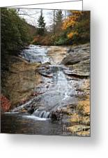 Bubbling Spring Branch Cascades Greeting Card