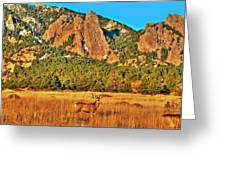 Buck And Flatirons Greeting Card
