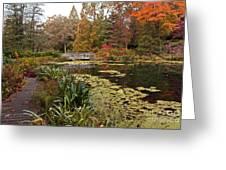 Buck Garden Fall Greeting Card