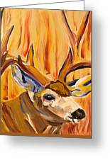 Buck In Fiery Sunset Greeting Card
