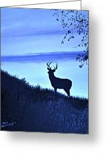 Buck Silhouette In Blue Greeting Card