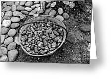 Bucket Of Rocks In Black And White Greeting Card