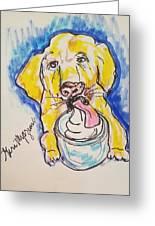Buckett List For Dogs Greeting Card