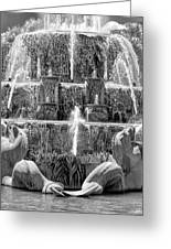 Buckingham Fountain Closeup Black And White Greeting Card