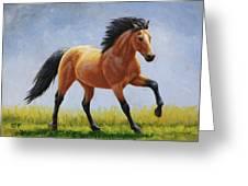 Buckskin Horse - Morning Run Greeting Card by Crista Forest