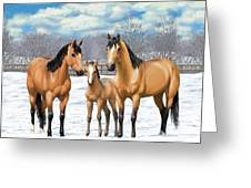 Buckskin Horses In Winter Pasture Greeting Card
