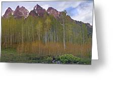 Buckskin Mtn And Friends Greeting Card
