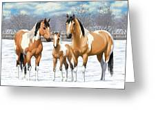 Buckskin Paint Horses In Winter Pasture Greeting Card