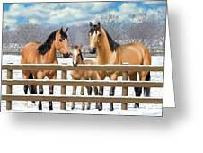 Buckskin Quarter Horses In Snow Greeting Card by Crista Forest