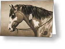 Buckskin War Horse In Sepia Greeting Card