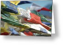 Buddhist Prayer Flags Greeting Card
