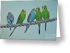 Budgie Buddies Greeting Card