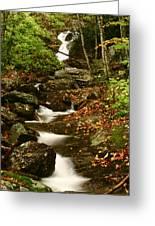 Buff Creek Falls Greeting Card