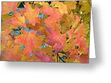 Buffalo Fall Leaves Greeting Card