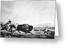 Buffalo Hunt, C1830 Greeting Card