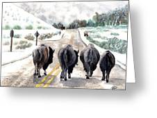 Buffalo Jam Greeting Card
