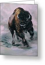 Buffalo Stampede Greeting Card