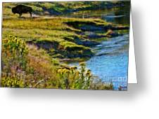 Buffalo River Bank Greeting Card