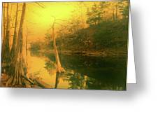Buffalo River In Gold Greeting Card