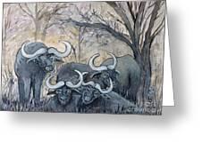 Buffaloes In The Bushveld Greeting Card