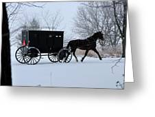 Buggy On Winter Road Greeting Card