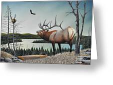 Bugling Elk Greeting Card