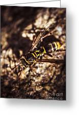 Bugs Life Greeting Card
