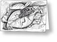 Bugs Greeting Card