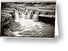 Bull Creek Water Run Greeting Card by Lisa  Spencer