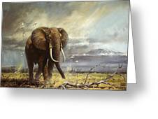Bull Elephant Under Kilimanjaro Greeting Card