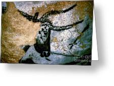 Bull: Lascaux, France Greeting Card
