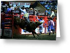 Bull Riding At The Grand National Rodeo Greeting Card