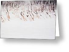 Bull Rushes In The Snow Db Greeting Card