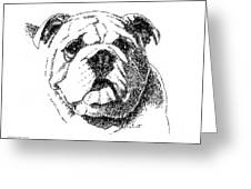 Bulldog-portrait-drawing Greeting Card