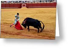 Bullfighting 21 Greeting Card